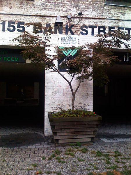 155BankStreet