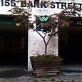 Week 34: 155 Bank Street