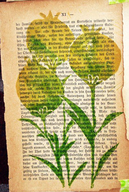 PoppyPrints-1