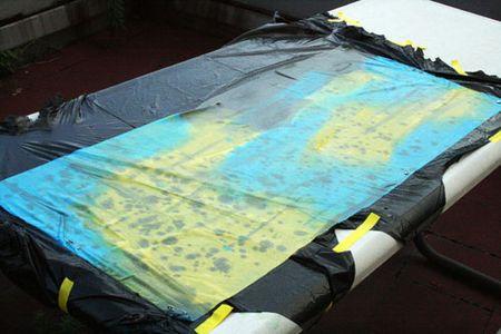 Paintedfabric