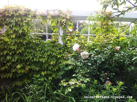Garden1-wm