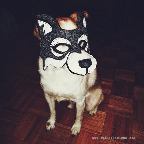 19-dog