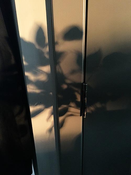 Shadow-sm