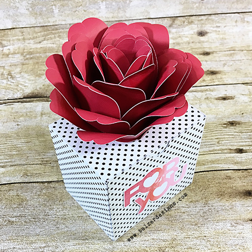 RoseBox-wm