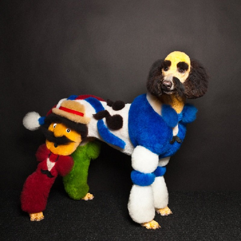 Creative-dog-grooming-paul-nathan