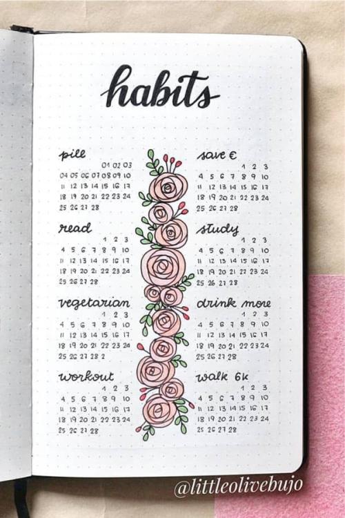 Pink-bujo-habit-spread